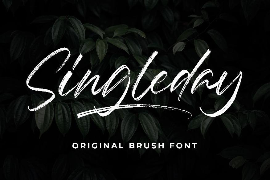 Singleday Brush Font