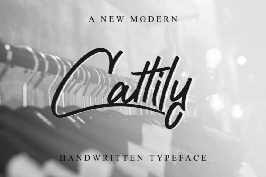 Cattily Handwritten Typeface
