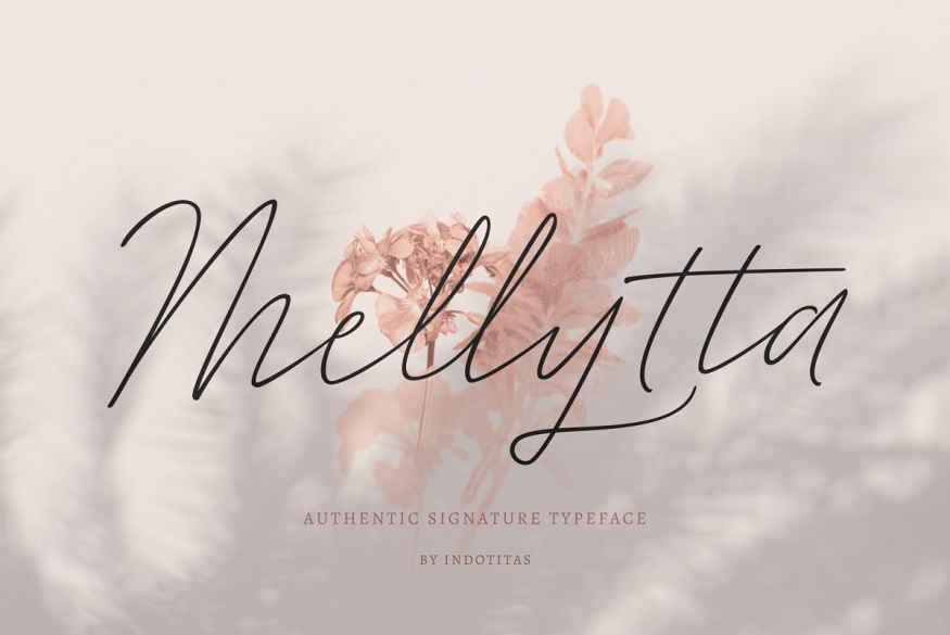 Mellytta Stunning Script Fonts