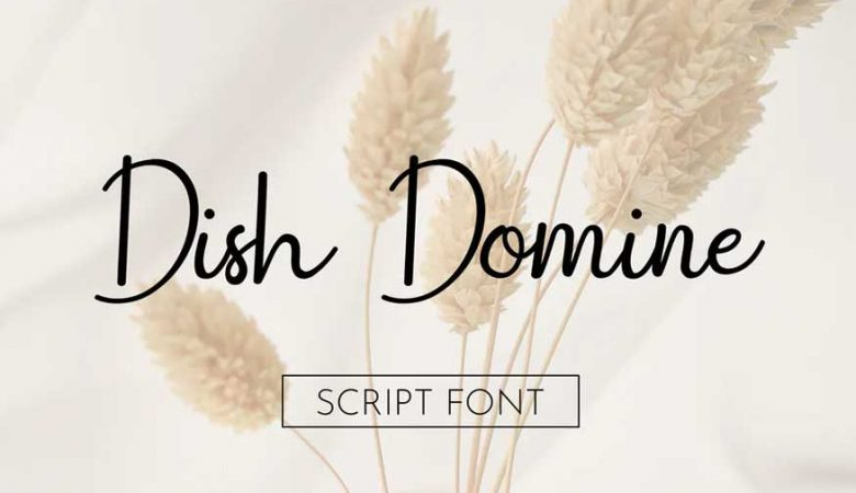Dish Domine Handwritten Script