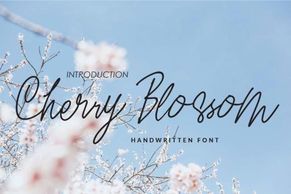 Cherry Blossom Font