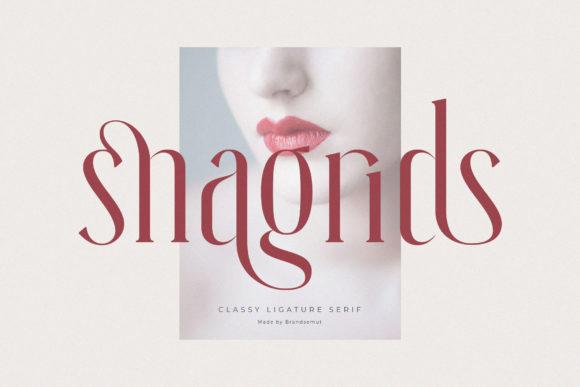 Snagrids Font